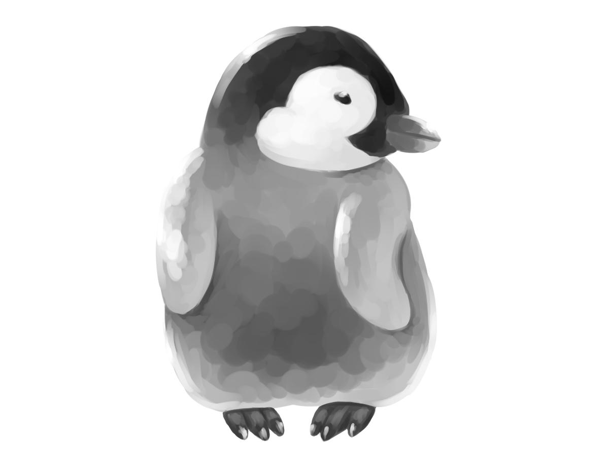 エンペラーペンギン雛